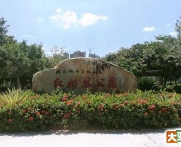 大亚湾红树林公园半日游
