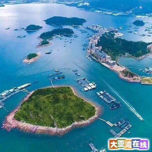 大亚湾文化消费月活动启动,299元深度体验渔家乐!