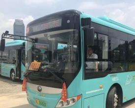棒!大亚湾336线更新为新能源公交车,经过你家了吗?