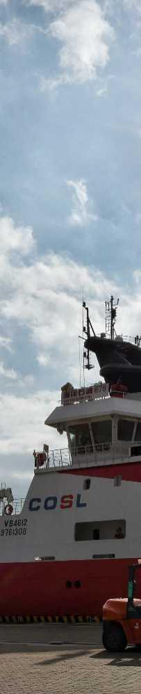 大亚湾石化区中海油惠州物流园码头