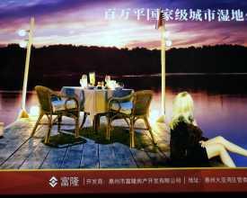 深圳东拓惠州市大大二湾区最有升值空间的房子