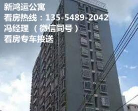 大亚湾比亚迪旁,新鸿运公寓、带电梯全新仅售12万/套起