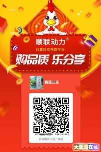 B20中国理事单位顺联动力,利用大数据跨界整合消费市场