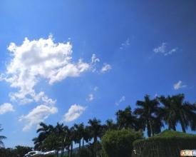 大亚湾最新照片