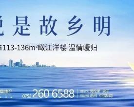 1/2江北价:8418元/㎡   你离江景大宅只差一个东江悦!