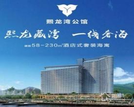 惠州最新一线海景房熙龙湾公馆内部销售状况