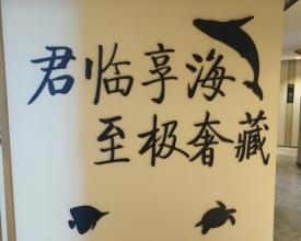 双悦湾海景房购房可免费坐飞机免费欣赏水天一色